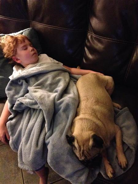 Samantha Harris' child and dog cuddle as they nap.