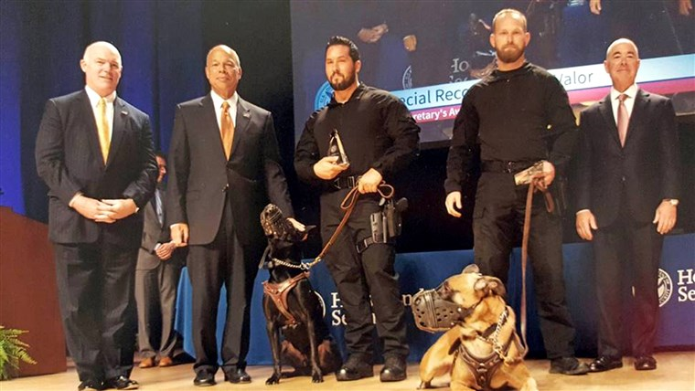 Тайна Service dogs Hurricane, left, and Jardan received the Award for Valor for their apprehension of a White House fence jumper at the U.S. Department of Homeland Security Secretary's Awards in 2015.