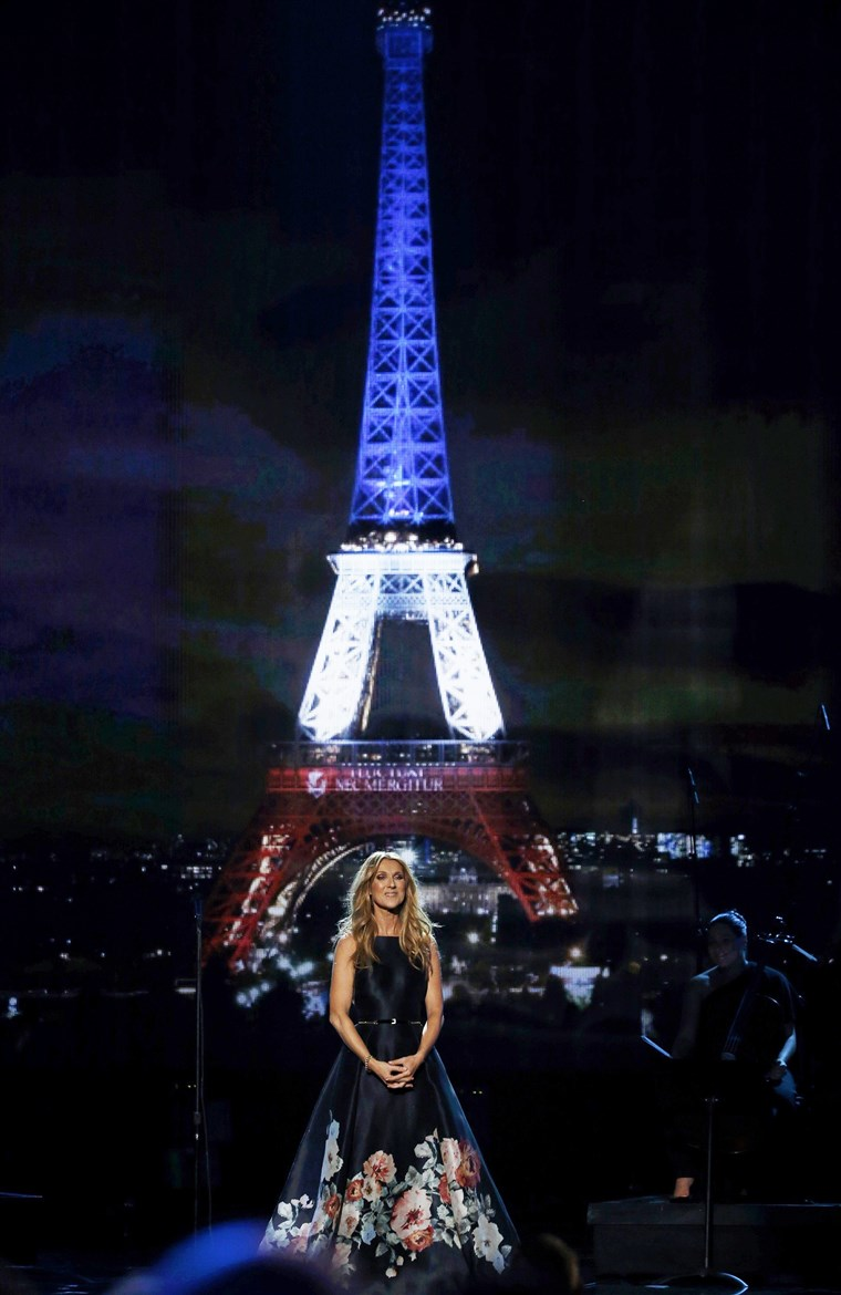 Dion with the backdrop of the Eiffel Tower at the AMAs.