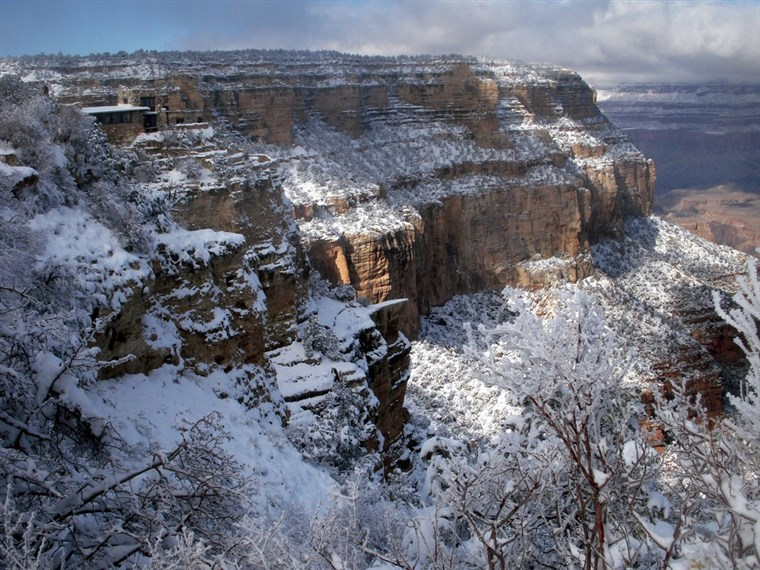 Schnee at the Grand Canyon