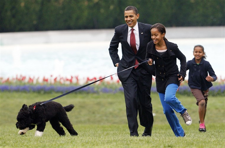 Малия Obama runs with Bo, followed by her dad and sister, Sasha, on the South Lawn of the White House on April 14, 2009.