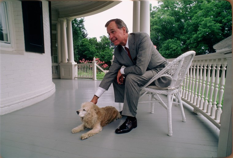 Obraz: Vice President George H.W. Bush with His Dog at the Vice President's Residence