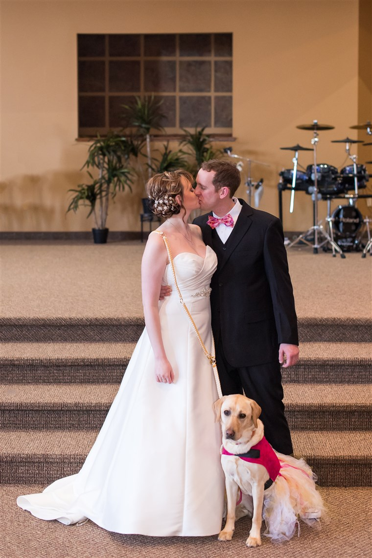 Excl: Service dog Bella calms down bride on wedding day